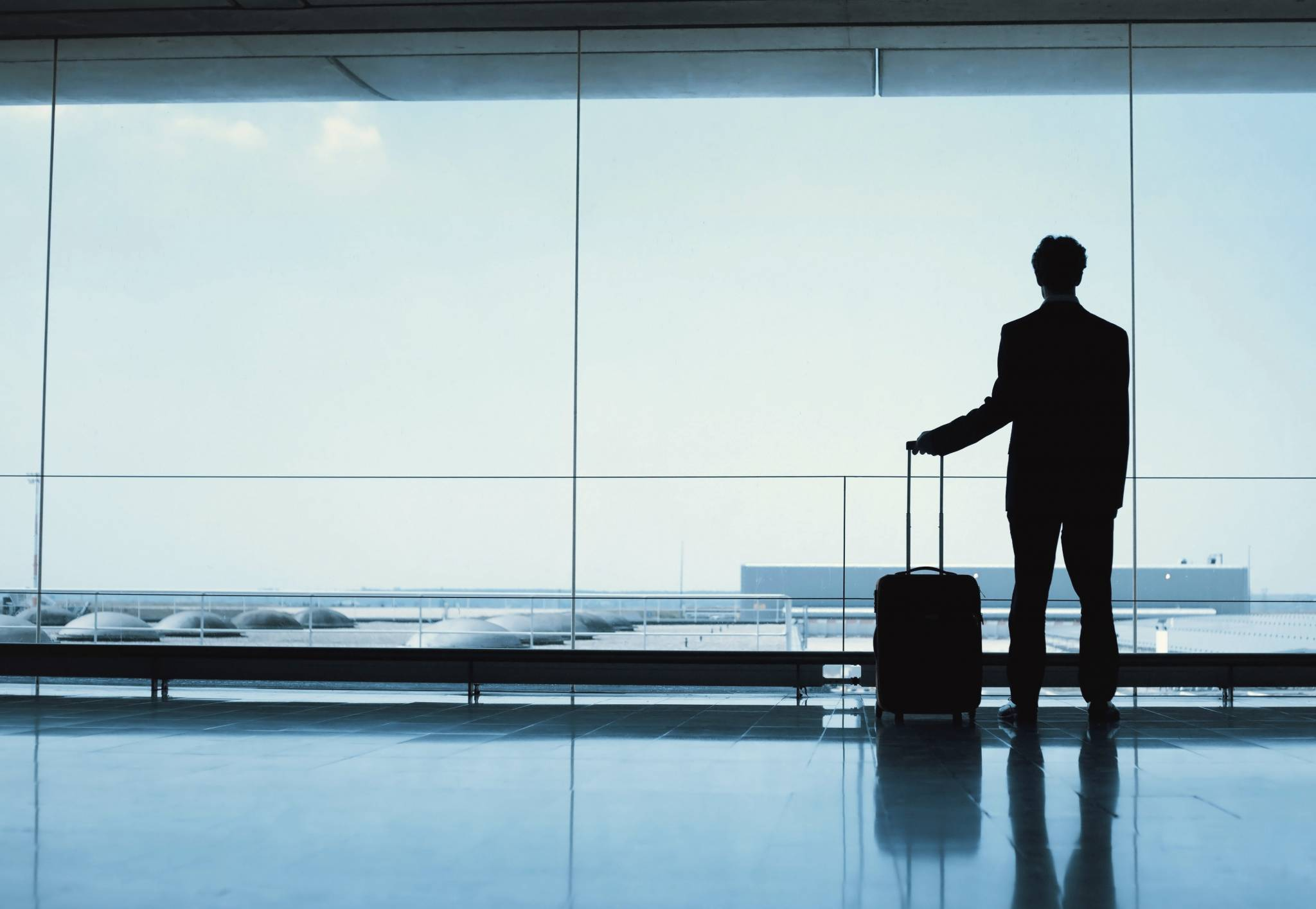 allen carr's easyway to overcome fear of flying